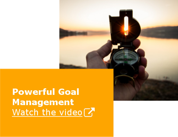 SuccessFactors Performance Management