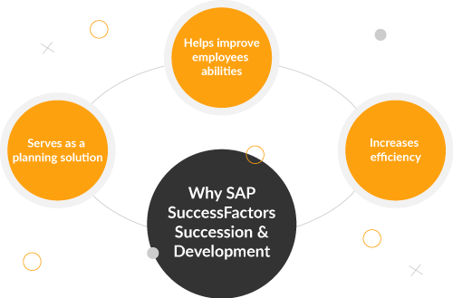 SAP SuccessFactors Succession & Development Module is the right choice for your organisation - TalenTeam